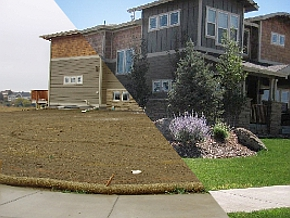 Before and After Scenes from Walker Landscaping, Fort Collins, CO