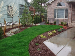 Greenscapes from Walker Landscaping, Fort Collins, CO